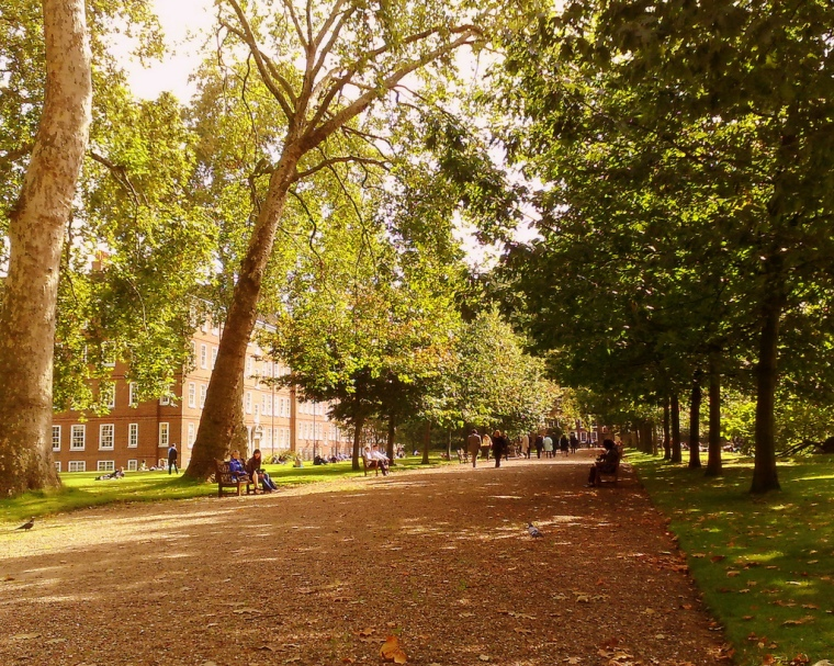 Gray's Inn Gardens. Image: JD Mack, Flickr